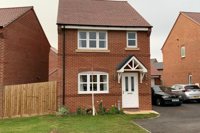 Thumbnail Detached house to rent in Canterbury Drive, Littleover, Derby