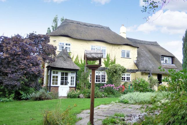 Thumbnail Country house for sale in Ingsdon, Newton Abbot