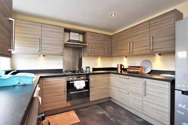 Thumbnail Terraced house to rent in Alexander Gardens, Ulverston