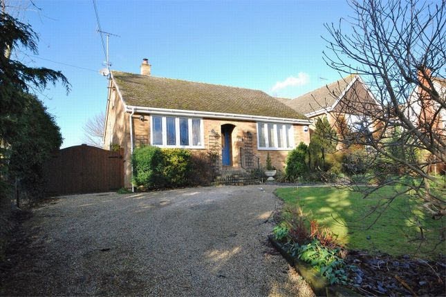 Thumbnail Detached bungalow for sale in Colne Park Road, White Colne, Essex