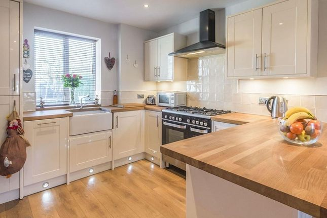Thumbnail Semi-detached house to rent in Great Ley, Welwyn Garden City