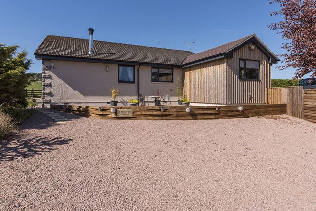 Thumbnail Bungalow for sale in Forglen, Turriff, Aberdeenshire