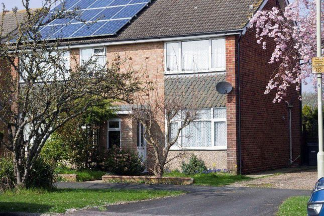Thumbnail Semi-detached house to rent in Cherrywood Gardens, Hayling Island
