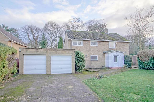 Thumbnail Detached house to rent in Fern Grove, Welwyn Garden City
