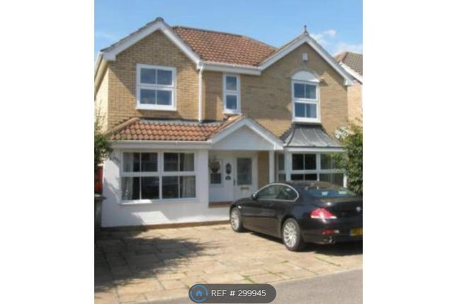 Thumbnail Detached house to rent in Norwood Road, Cheshunt, Waltham Cross