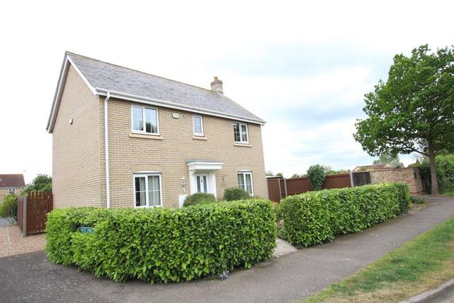 Thumbnail Detached house for sale in Main Street, Witchford, Ely
