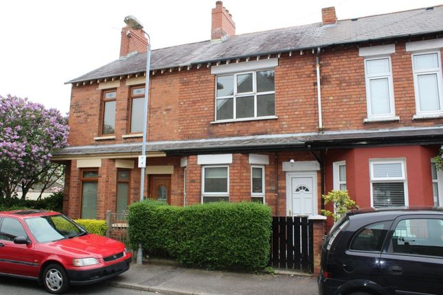 Thumbnail Terraced house to rent in Hillview Avenue, Belfast