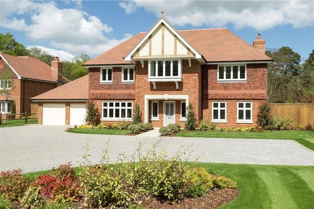 Thumbnail Detached house for sale in St. Neots Road, Eversley, Hook