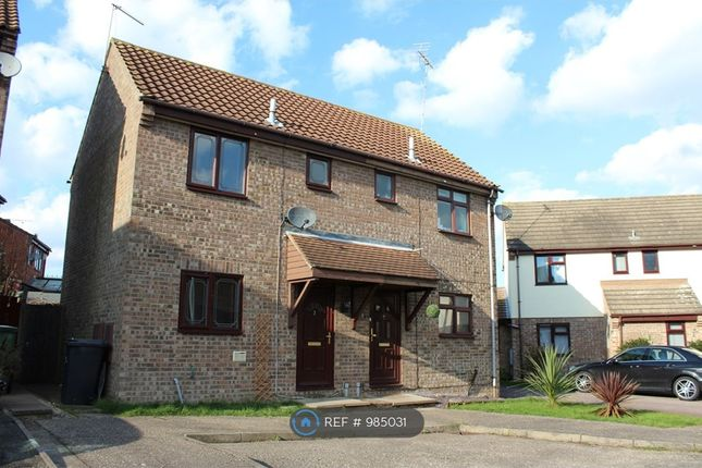 Thumbnail Semi-detached house to rent in Primrose Place, Witham