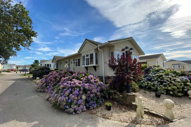 Thumbnail Mobile/park home for sale in Winkleigh