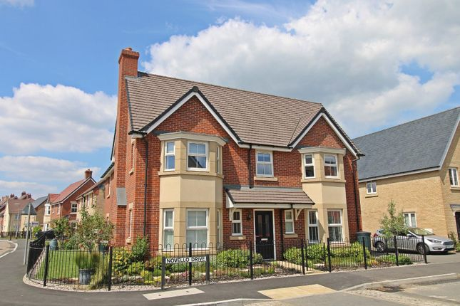 Thumbnail Detached house for sale in Novello Drive, Biggleswade