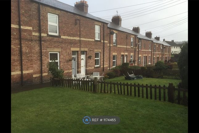 2 bed terraced house to rent in Spittal Terrace, Hexham NE46