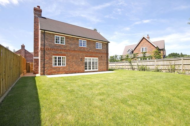 Thumbnail Detached house to rent in Swan Meadow, Pewsey