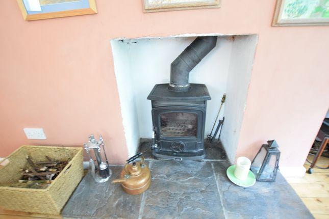 Wood Burner of Den Hill, Eastbourne BN20