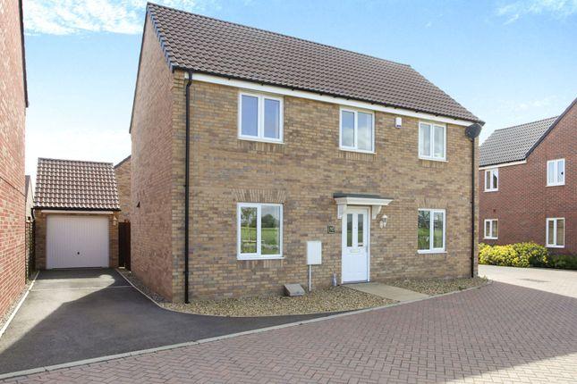 Thumbnail Detached house for sale in Duke Meadows, Market Deeping, Peterborough