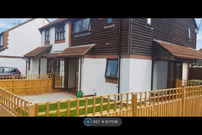 Thumbnail Semi-detached house to rent in Colfe Way, Sittingbourne