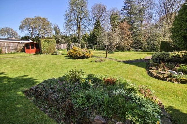 Thumbnail Detached house for sale in Walford Road, Ross-On-Wye