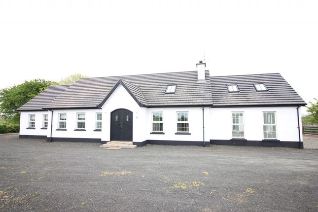 Thumbnail Detached house to rent in Drones Road, Armoy, Ballymoney