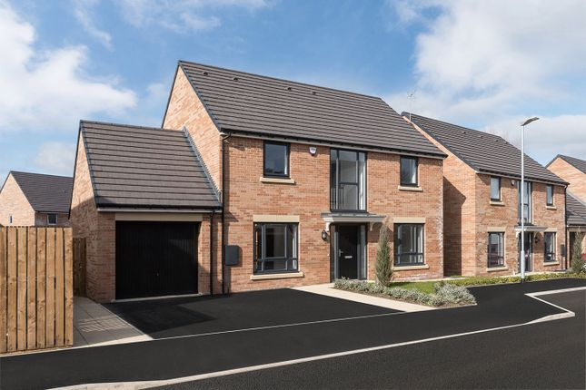 "Thumbnail Detached house for sale in ""The Stannington"" at Loansdean, Morpeth"
