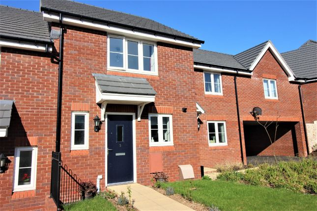 Thumbnail Terraced house for sale in Larkspur Court, Wilkins Drive, Paignton