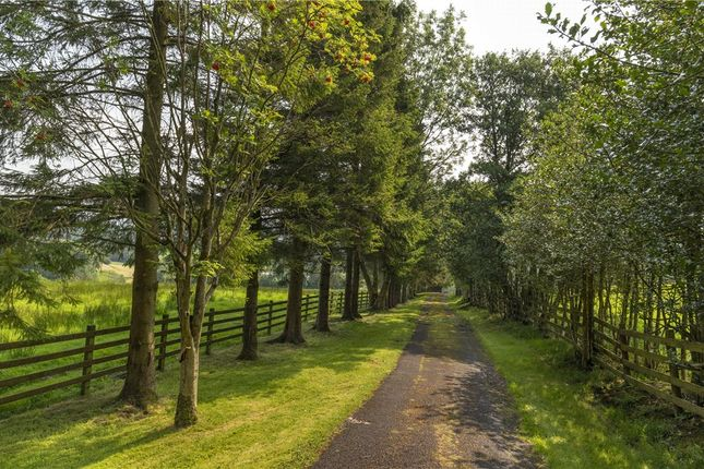 Approach of Blacko Bar Road, Roughlee, Nelson BB9