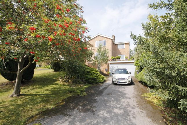 Thumbnail Detached house for sale in Archery Rise, Durham