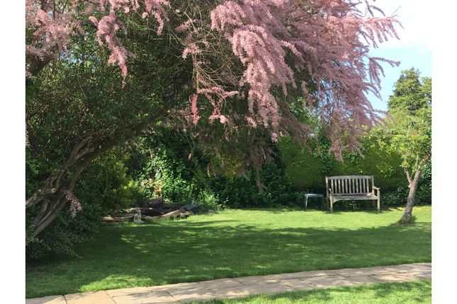 Garden of Watling Street, St. Albans AL2