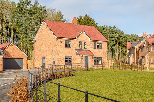 Thumbnail Detached house for sale in Harthope Court, St. Mary Park, Stannington, Northumberland