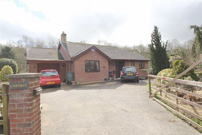 Thumbnail Detached bungalow for sale in Cartref, New Road, Llanfair Caereinion, Welshpool, Powys