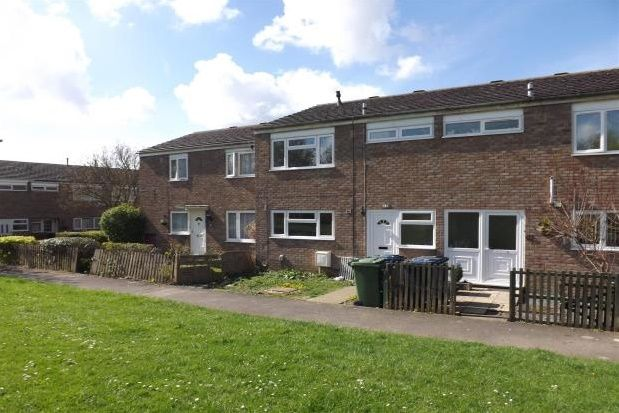 Thumbnail Property to rent in Norfolk Road, Huntingdon