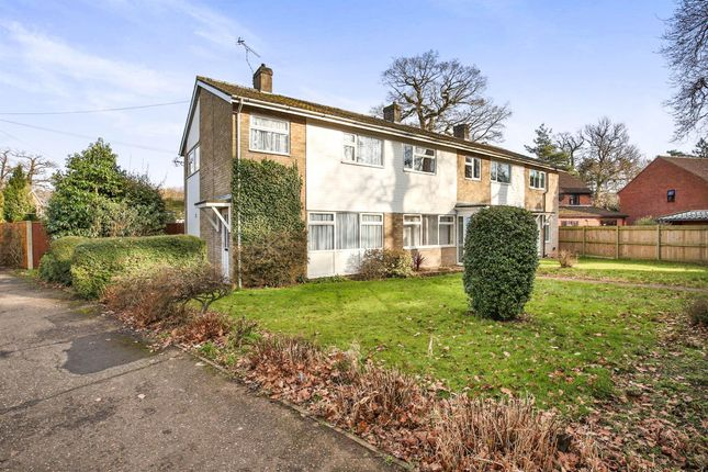 Thumbnail Property to rent in South Green Gardens, Dereham