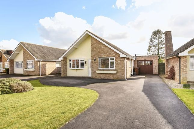 Thumbnail Detached bungalow for sale in Harlington Avenue, Grove, Wantage