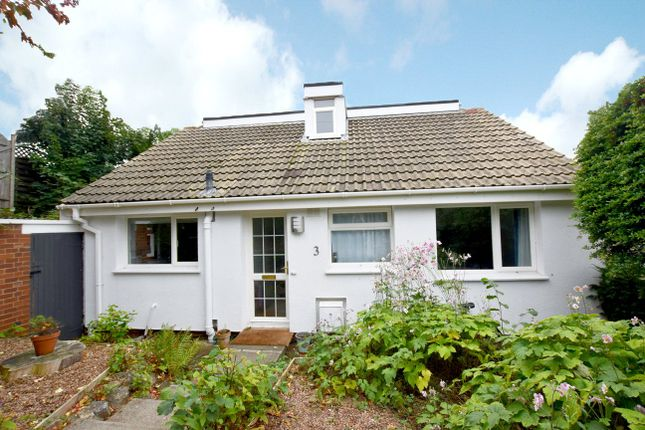 Thumbnail Detached house to rent in Glenwood Rise, St. Leonards, Exeter