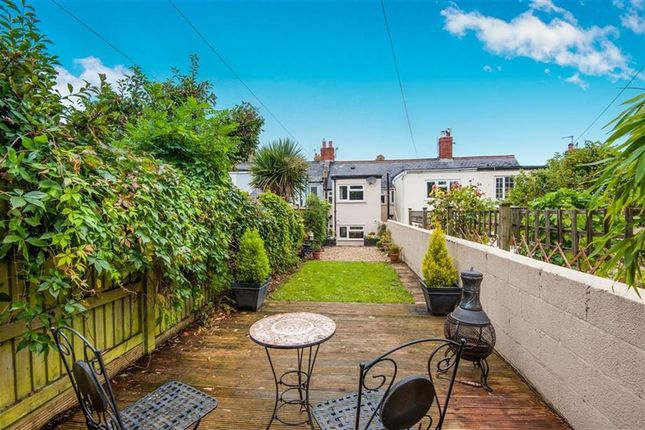 Thumbnail Cottage to rent in Musbury Road, Axminster