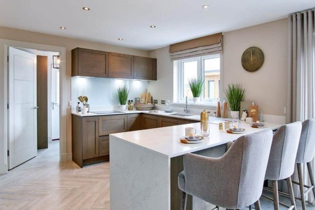"""Thumbnail Detached house for sale in """"Lawrie Garden Room"""" at Low Coniscliffe, Darlington"""