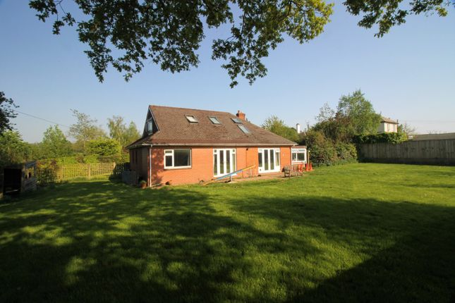 Thumbnail Detached bungalow for sale in Mill Lane, Ottery St. Mary
