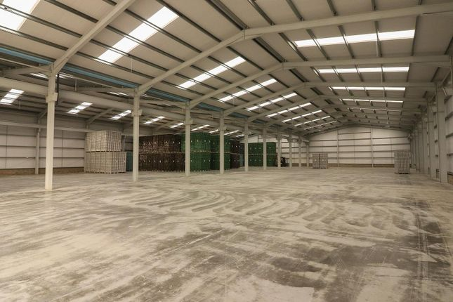 Photo 4 of Lissue Industrial Estate, 1 Lissue Walk, Lisburn, County Antrim BT28