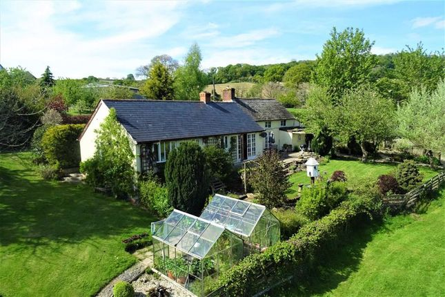 Thumbnail Farm for sale in Luggy Brook Cottage, Red Lane, Berriew, Welshpool, Powys