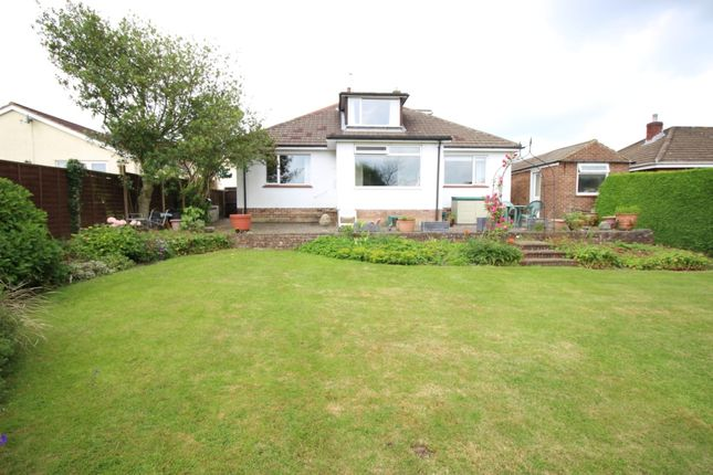 Thumbnail Detached bungalow to rent in Park Road, Coombs Park, Coleford