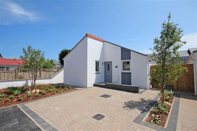 Thumbnail Detached bungalow for sale in Wall Park Road, Wall Park, Brixham