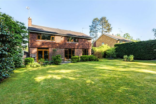 Thumbnail Detached house for sale in Heathpark Drive, Windlesham, Surrey