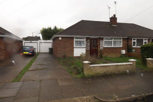 Thumbnail Bungalow to rent in Chapterhouse Road, Luton