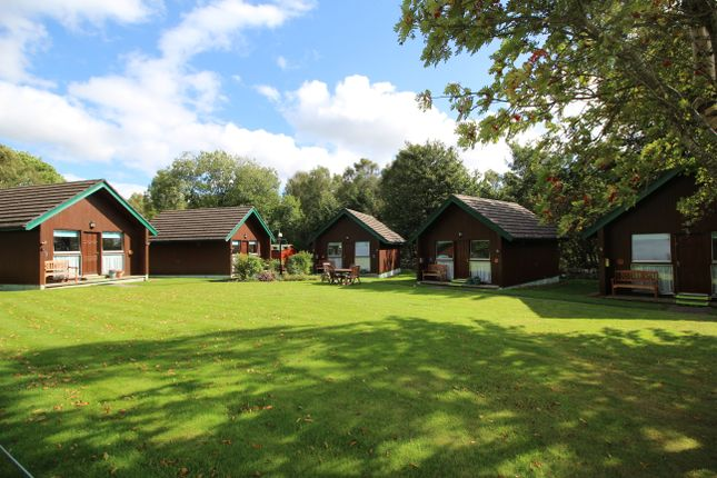Thumbnail Lodge for sale in Tore, By Inverness