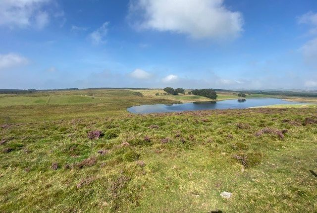 Thumbnail Land for sale in Penuwch, Tregaron