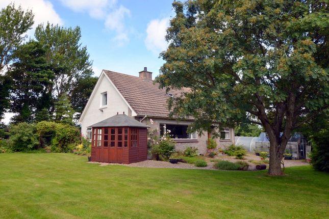 Thumbnail Detached house for sale in Wilmara, Balnaspirach, Nairn