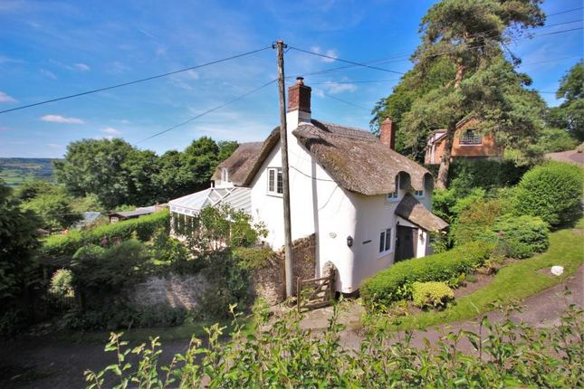 Thumbnail Detached house for sale in Taylors Lane, Morcombelake, Bridport