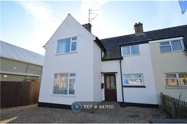 Thumbnail Semi-detached house to rent in Newnham Street, Ely