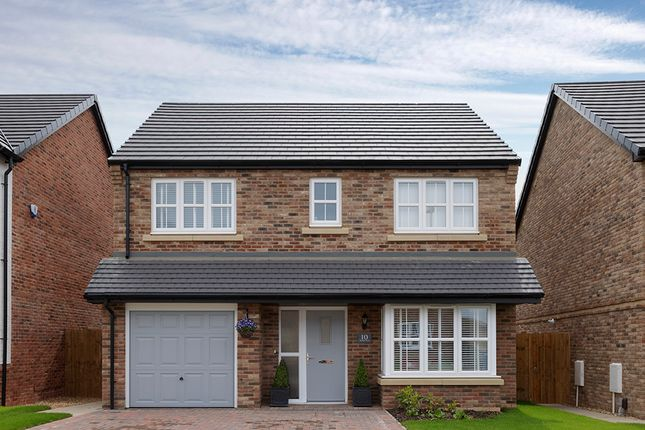 """Thumbnail Detached house for sale in """"Ferguson"""" at Low Lane, Acklam, Middlesbrough"""