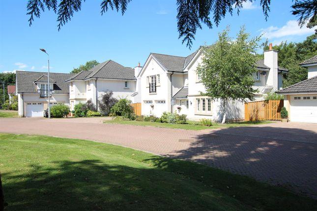 Thumbnail Property for sale in Bellefield Way, Lanark