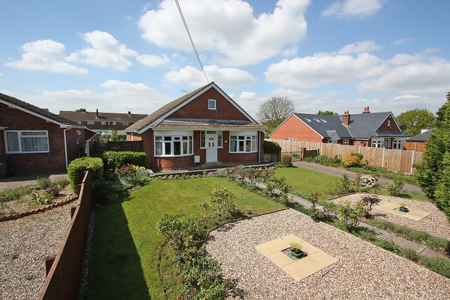 Thumbnail Detached bungalow for sale in Tidings Hill, Halstead